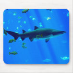 Black Tipped Shark Mouse Pad