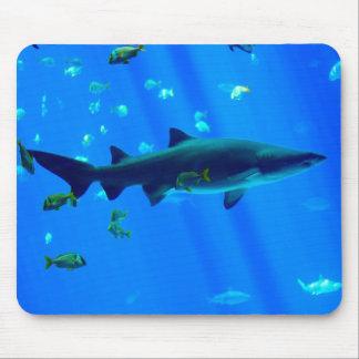 Black Tipped Shark Mousepad