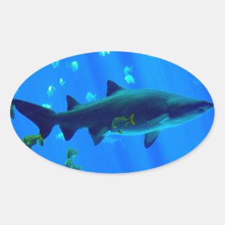 Black Tipped Shark Oval Sticker
