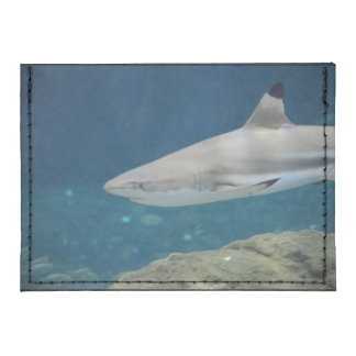 Black Tipped Shark Swimming Underwater Tyvek® Card Case Wallet