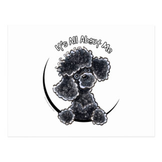 Black Toy Poodle IAAM Postcard