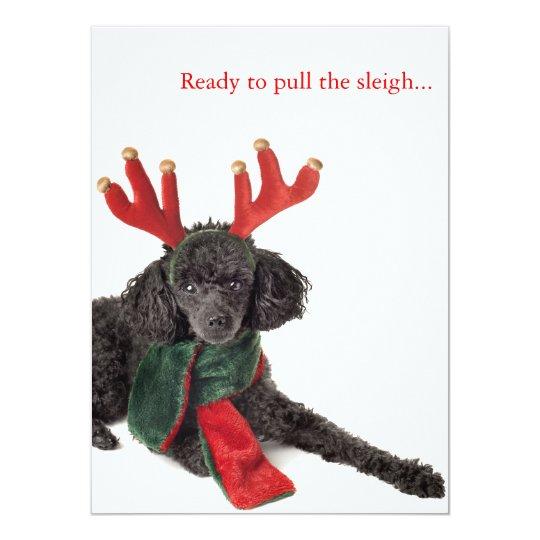 Black toy poodle with reindeer antlers card