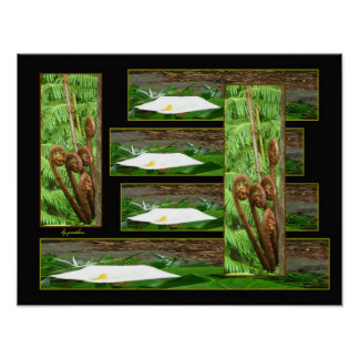 BLack Tree Fern and Lily Collage 2 Poster