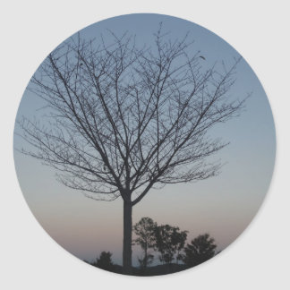Black Tree  Silhouetted against purple pink sky Classic Round Sticker