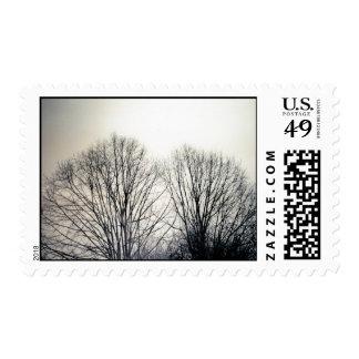 Black Trees Stamp
