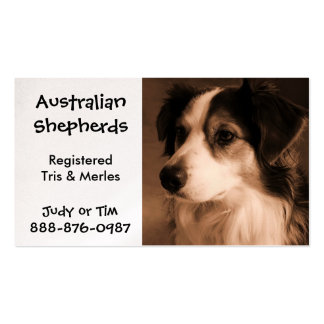 Black Tricolored Australian Shepherd Breeding Business Card