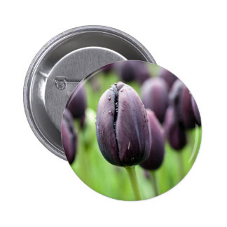 Black Tulip Pinback Button