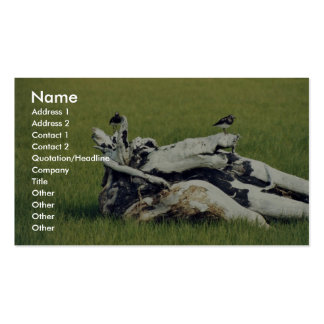 Black turnstones on driftwood business card templates