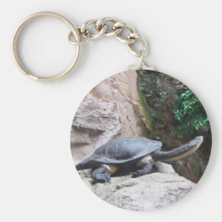 Black Turtle With Long Neck On The Rocks Key Chain