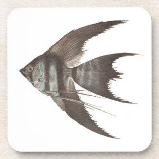 Black Veil Tail Angelfish Set of 6 Coasters