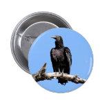 Black Vulture Button