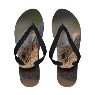black vulture sandals