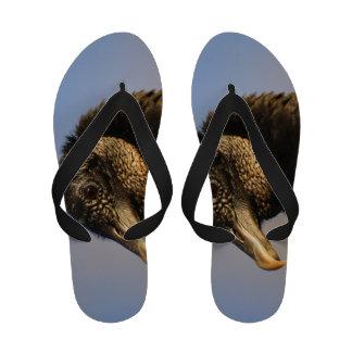 black vulture flip flops