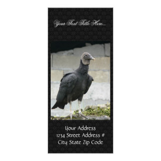 Black Vulture On The Hill Rack Card