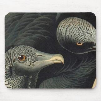 Black Vultures, John James Audubon Mouse Pad