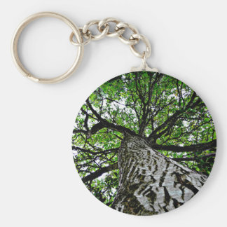 Black Walnut Trunk and Branches Keychain