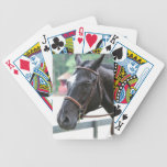 Black Warmblood Deck of Cards  Bicycle Playing Cards