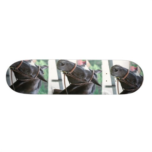 Black Warmblood  Skateboard