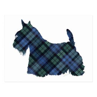 Black Watch Tartan Scottish Terrier Postcard