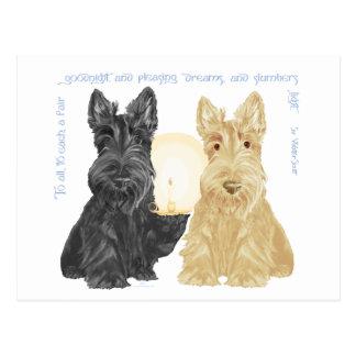 Black & Wheaten Goodnight Scotties Postcard