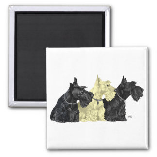 Black & Wheaten Scottish Terriers 2 Inch Square Magnet