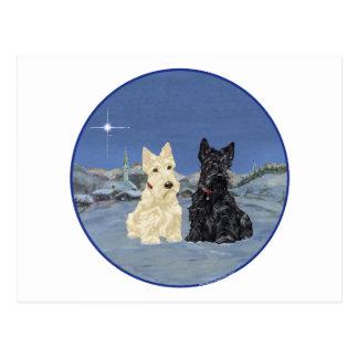 Black & Wheaten Scottish Terriers Winter Postcard