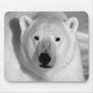 Black & Whit Polar Bear Mouse Pad