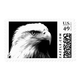 Black & White American Eagle Stamps