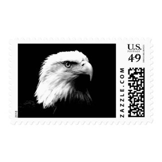 Black & White American Eagle Stamps