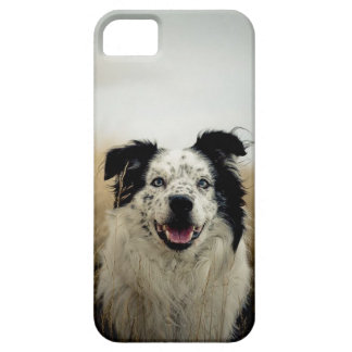 Black & White Aussie Dog iPhone SE/5/5s Case