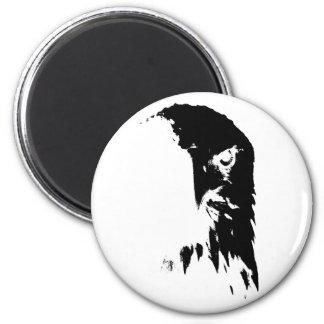Black & White Bald Eagle Magnet