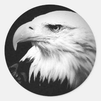 Black & White Bald Eagle Round Sticker
