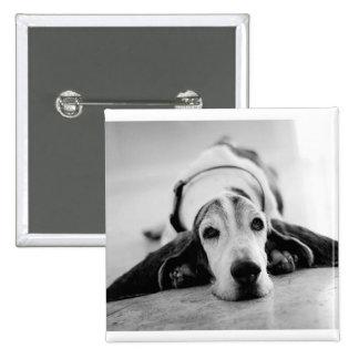 Black & White Basset Hound Button