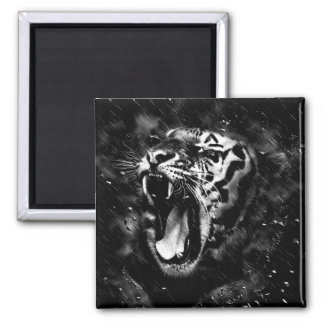 Black & White Beautiful Tiger Head Wildlife Magnet