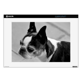 "Black & White Boston Terrier Decal For 15"" Laptop"