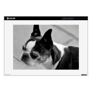 """Black & White Boston Terrier Decal For 15"""" Laptop"""