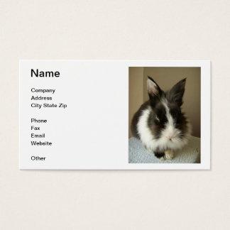 Black & White Bunny Rabbit Business Card