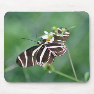 Black White Butterfly Mousepad