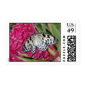 Black & White Butterfly Postage