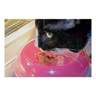 black white cat head pink bowl sparkle animal pet poster