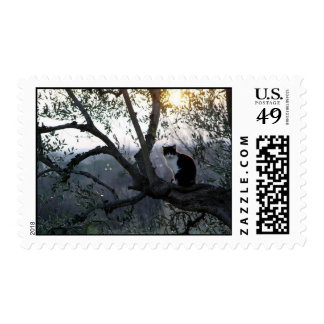 Black & White Cat in a Tree Stamps