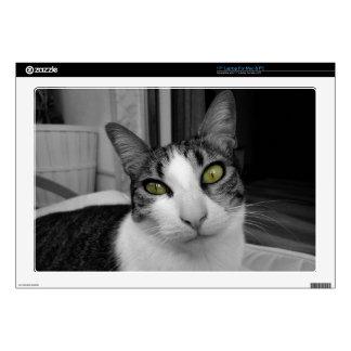 Black White Cat Photo Laptop Decal