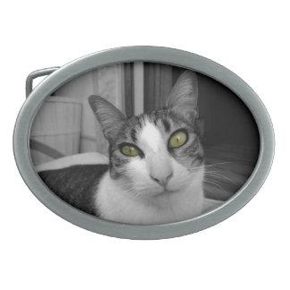 Black White Cat Photo Oval Belt Buckle