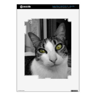 Black White Cat Photo Skins For iPad 3