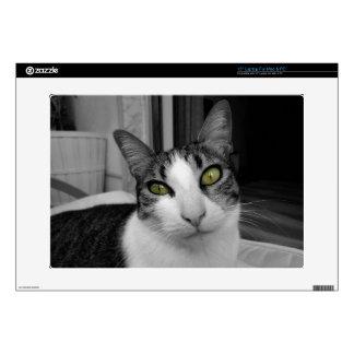 Black White Cat Photo Skins For Laptops