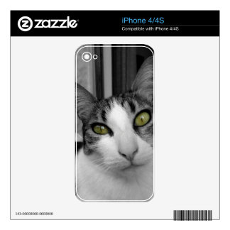 Black White Cat Photo Skins For The iPhone 4S