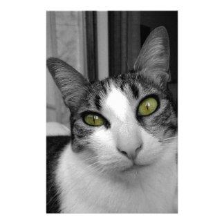 Black White Cat Photo Stationery