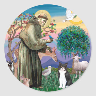 Black & White Cat - Saint Francis Classic Round Sticker