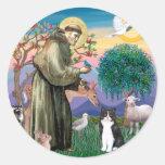 Black & White Cat - Saint Francis Sticker