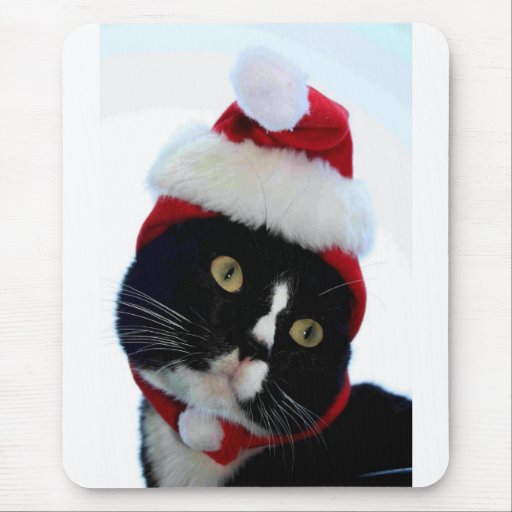 Black & White Cat Santa Hat looking left no frame Mouse Pad